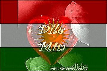 Bedeutet kurdisch auf was ich liebe dich ich liebe