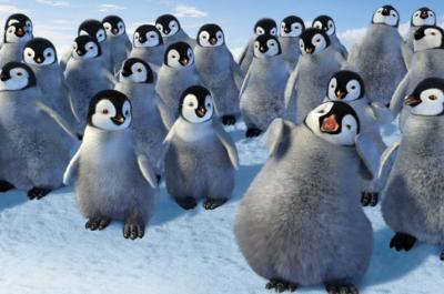 Pinguin Süß