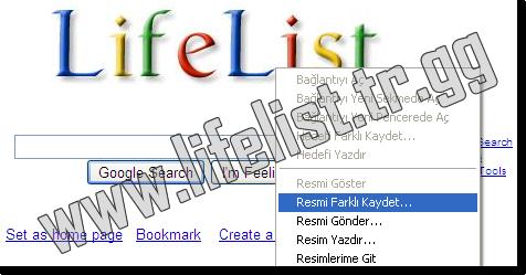 Funny Logo Oluştur / Create Funny Logo ( Resim 3 )