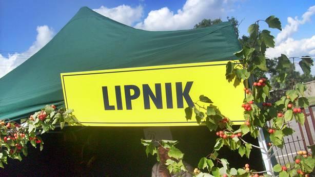 LIPNIK