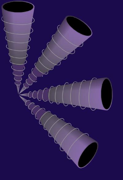 Ein 144-Fibonacci-Tüten-in-Kugelsystem mit Mehrfach-Instanz, Elisabeth Becker-Schmollmann, Mikrobiom, Erkenntnistheorie, DNS,