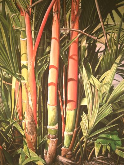 Lippenstiftpalme, Aquarell Tubenfarben auf Malkarton, 80 x 120 cm, gemalt mit hochwertigen Farben