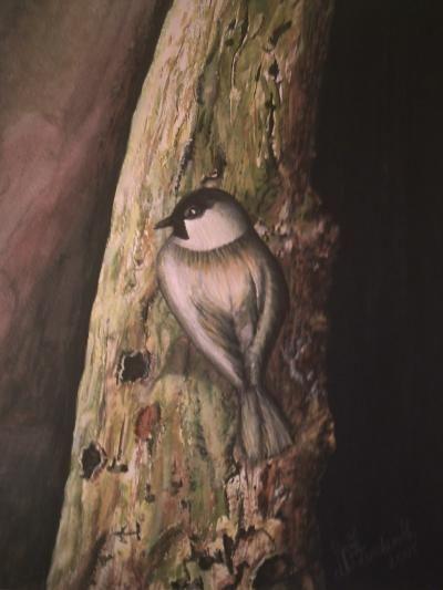 """gemaltes Vogelmotiv, gemalt im Realismus von Elisabeth oder mit Künstlernamen """"Lissa Wenderoth"""", mit hochwertigen Aquarell Tubenfarben auf Malkarton angefertigt"""