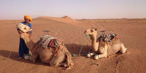 morocco destination management company