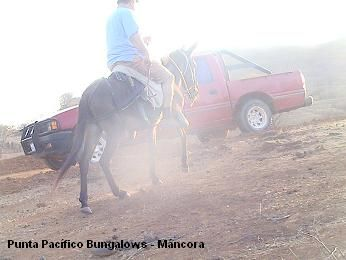 Punta Pacífico Bungalows- Máncora- Perú. A caballo hacia Pilares Quebrada Fernández