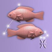 come conquistare sedurre pesci