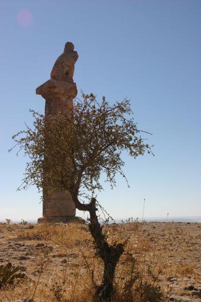 Karakuş Tepesi Kartalı-Adıyaman