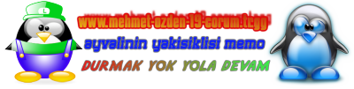 www.mehmet-ozden-19-corum.tr.gg