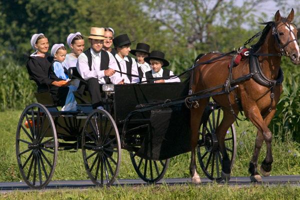 Amiş, Amişler, Amish, Amisch