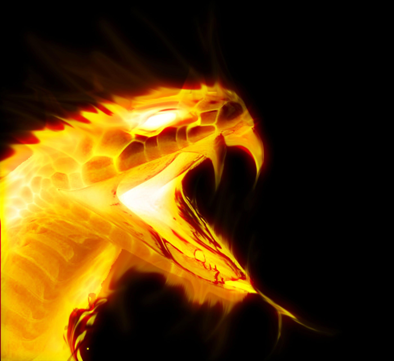 ateş yılanı