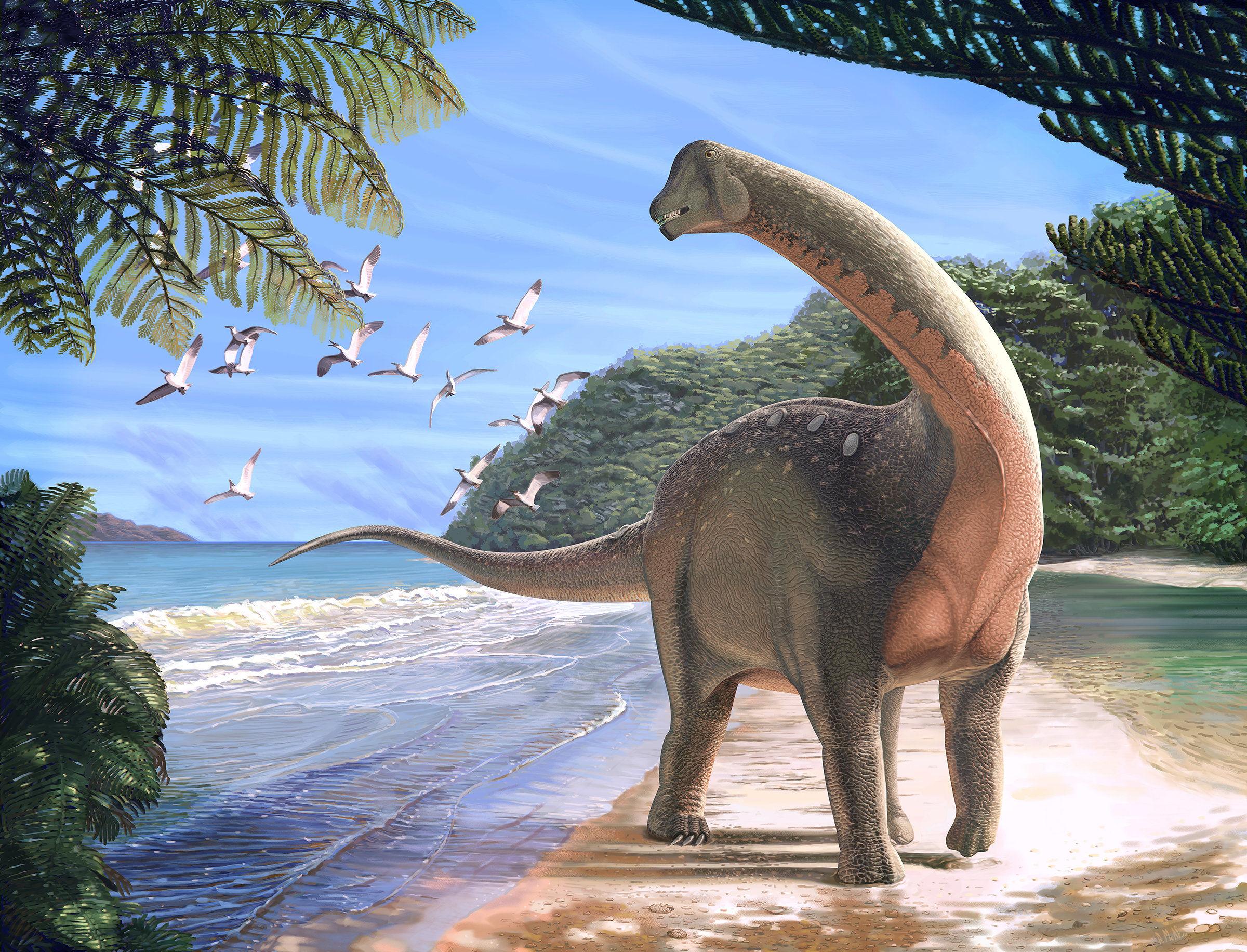 dinazor, dinozor