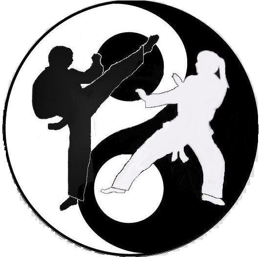 dövüş sanatları, martial arts