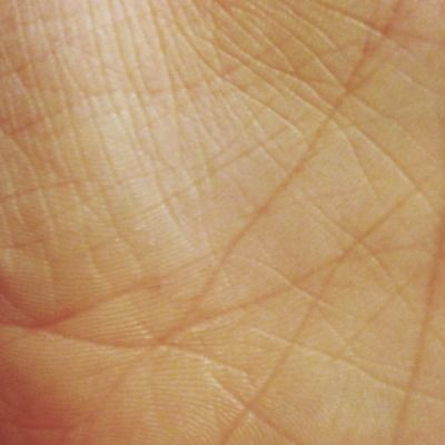 El, Hand