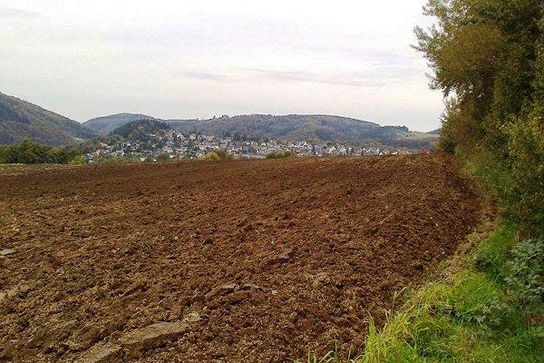 In der Ferne sieht man Melsbach