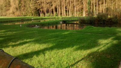 Fischteiche Melsbach