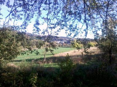 Blick auf den Wingertsberg von Oberbieber