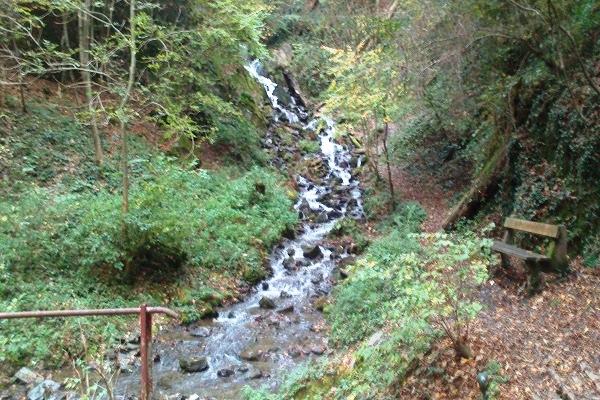 Der Wasserfall des Laubachs
