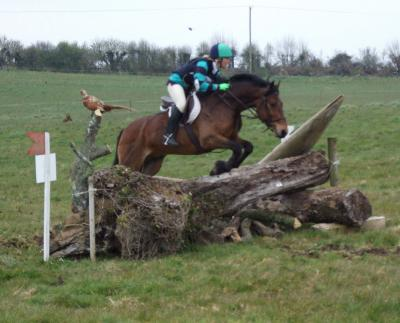 Lakelands Riding Club National Hunter Trials 2008
