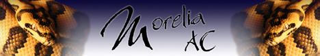 https://img.webme.com/pic/m/morelia-ac/morelia-ac-banner.jpg