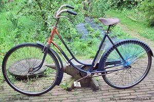 vélo Austral dames