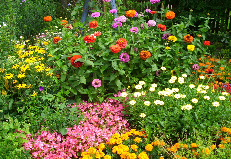 Luxus Blumenbeete Anlegen Ideen