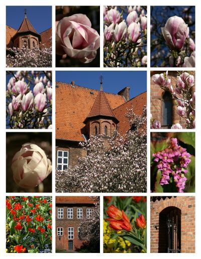 Der Lüneburger Rathhausgarten! Copyright Sonja Haase