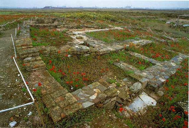 Yacimiento arqueológico de isla Saltés