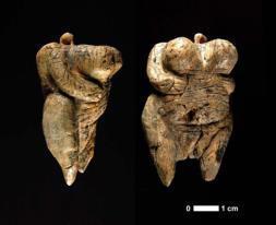 Las nalgas y los genitales están tallados con detalle. Incluso pueden apreciarse «los labios mayores entre las piernas abiertas», por lo que los investigadores creen que existió una exageración «deliberada» de las formas sexuales de mujercilla de marfil