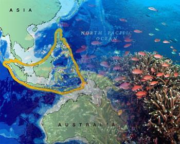 Situación del Triángulo de Coral