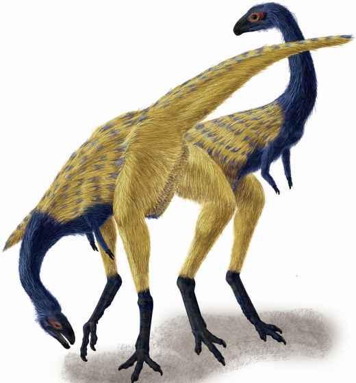 Recreación del dinosaurio Limusaurus inextricabilis encontrado en China.