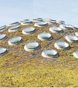 Cubierta ajardinada de 10.000 metros cuadrados de la California Academy of Science