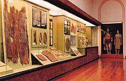 Interior del Museo Canario