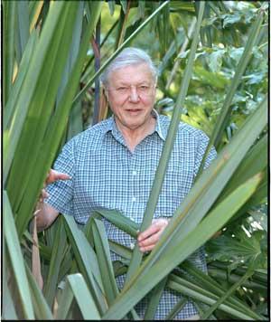 David Attenborough, Premio Príncipe de Asturias de Ciencias Sociales