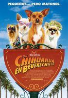 Un chihuahua en Beverly Hills  Estreno 6 Febrero