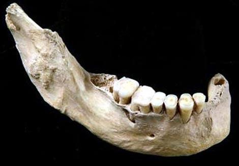 Mandíbula del 'Homo sapiens' primitivo de China