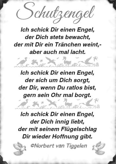 Norbert Van Tiggelen Sprüche Norbert Van Tiggelen