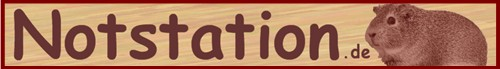 Notstation.de – Alle Meerschweinchen Notstationen in Deutschland, Österreich und der Schweiz