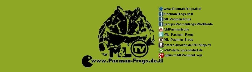 M&L Pacman Frogs - Schmuckhornfrosch, Hornfrosch, Horned Frog