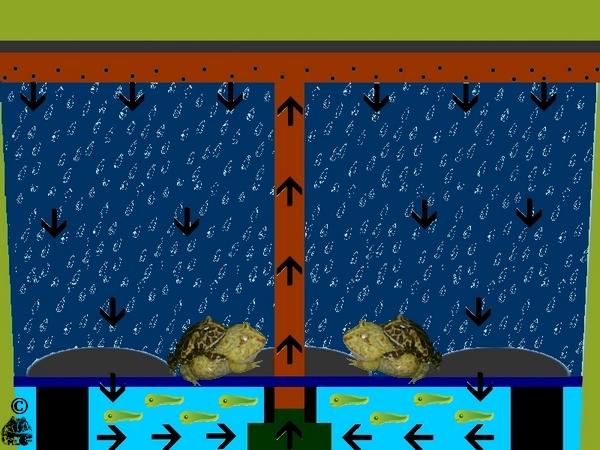 Funktionsweise der Regenkammer