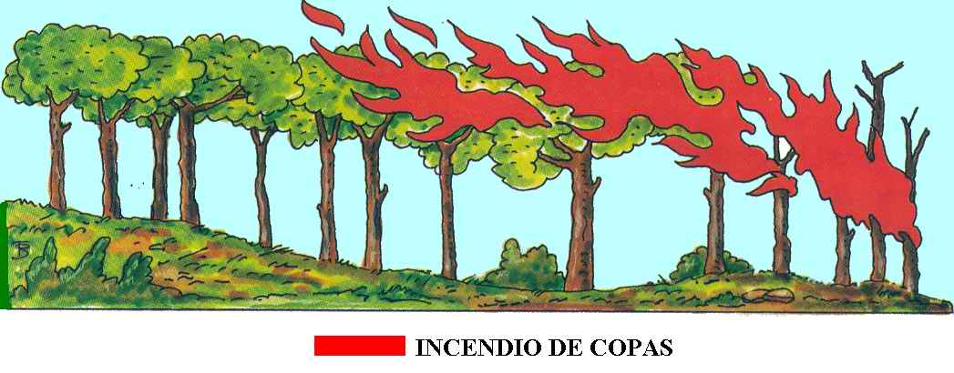 INCENDIO DE COPAS
