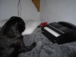 Wann kommt das Fax denn endlich? Habe schließlich noch mehr zu tun!