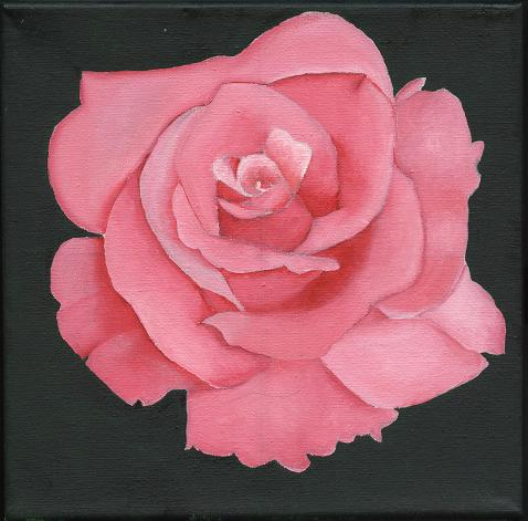 Rosa al oleo