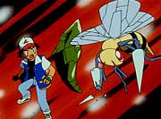 https://img.webme.com/pic/p/pokemon-safage/004.png
