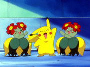 https://img.webme.com/pic/p/pokemon-safage/124.png