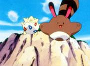 https://img.webme.com/pic/p/pokemon-safage/135.png