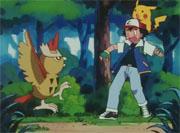 https://img.webme.com/pic/p/pokemon-safage/156.png