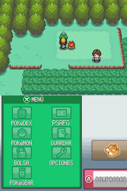 https://img.webme.com/pic/p/pokemon-safage/319.jpg