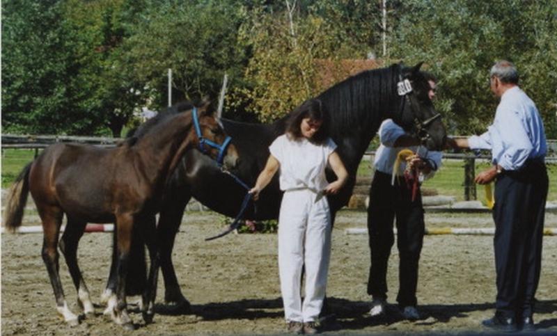 Urusla Wofgruber mit Lucina Miss Julie v. Meisterhofs Mogli-Cherry Bronco