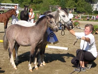 Besuch aus Tirol: Familie Kitzbichler mit ihren Welsh-A-Ponys.