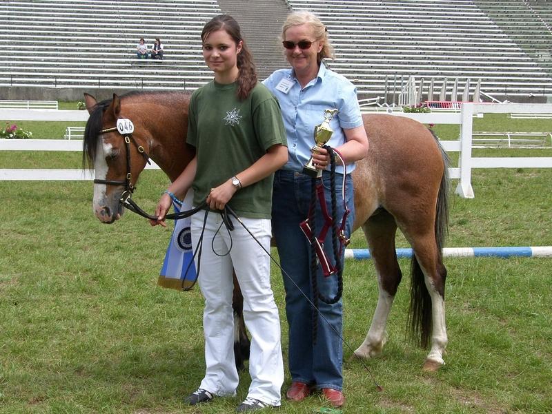Siegerstute aller Sportponyrassen Giglbergs Joyfully mit ihrer Besitzerin Baronin Redwitz